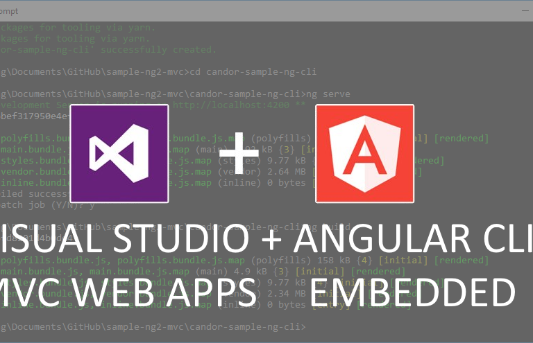 How to use Angular CLI with Visual Studio 2017